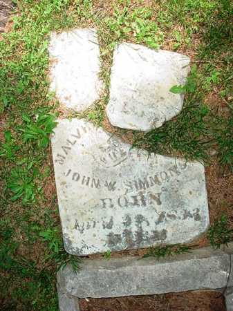 SIMMONS, MALVINA - Benton County, Arkansas | MALVINA SIMMONS - Arkansas Gravestone Photos
