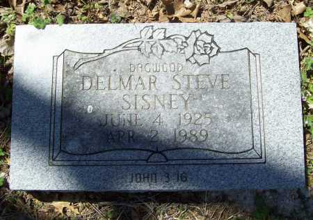 SISNEY, DELMAR STEVE - Benton County, Arkansas | DELMAR STEVE SISNEY - Arkansas Gravestone Photos