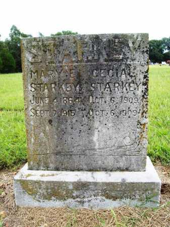 STARKEY, MARY E - Benton County, Arkansas | MARY E STARKEY - Arkansas Gravestone Photos