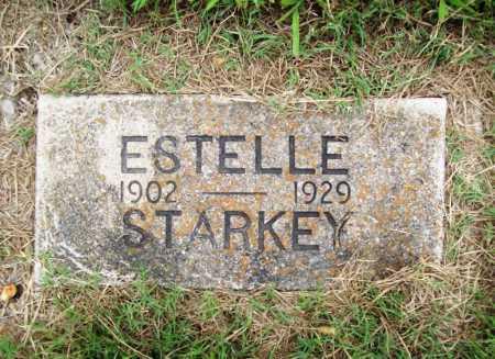 STARKEY, ESTELLE - Benton County, Arkansas | ESTELLE STARKEY - Arkansas Gravestone Photos