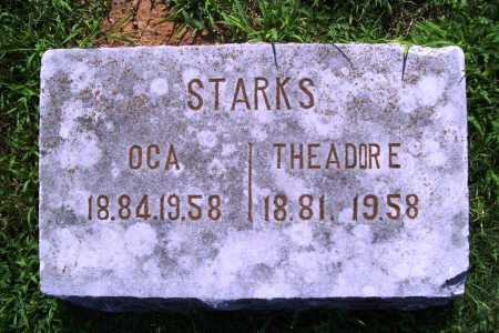 STARKS, THEADORE - Benton County, Arkansas | THEADORE STARKS - Arkansas Gravestone Photos