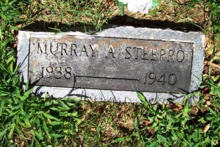 STEEPRO, MURRAY ALFRED (ORIGINAL) - Benton County, Arkansas | MURRAY ALFRED (ORIGINAL) STEEPRO - Arkansas Gravestone Photos