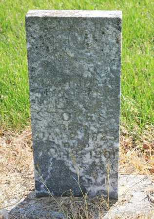 STOKES, (ILLEGIBLE) - Benton County, Arkansas | (ILLEGIBLE) STOKES - Arkansas Gravestone Photos