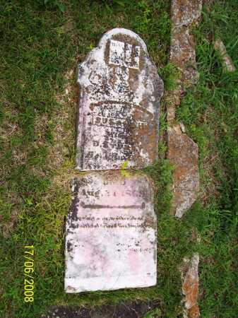 MARTIN STURDY, SUSANAH - Benton County, Arkansas | SUSANAH MARTIN STURDY - Arkansas Gravestone Photos