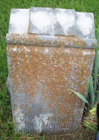 TANNER, LUDA Z. - Benton County, Arkansas | LUDA Z. TANNER - Arkansas Gravestone Photos