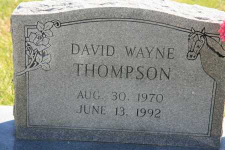 THOMPSON, DAVID WAYNE - Benton County, Arkansas | DAVID WAYNE THOMPSON - Arkansas Gravestone Photos