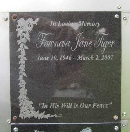 TROUT TIGER, FAWNEVA JANE - Benton County, Arkansas | FAWNEVA JANE TROUT TIGER - Arkansas Gravestone Photos