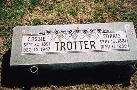 JOHNSON TROTTER, CASSIE - Benton County, Arkansas | CASSIE JOHNSON TROTTER - Arkansas Gravestone Photos