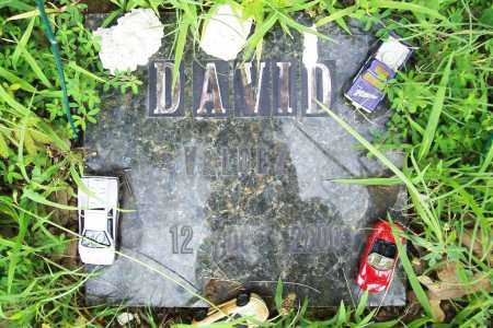 VALDEZ, DAVID - Benton County, Arkansas | DAVID VALDEZ - Arkansas Gravestone Photos
