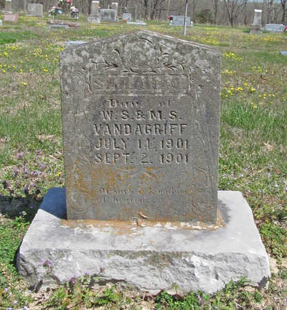VANDAGRIFF, SARAH O. - Benton County, Arkansas | SARAH O. VANDAGRIFF - Arkansas Gravestone Photos