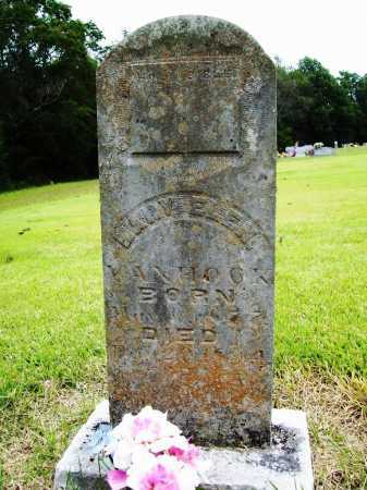 VANHOOK, MARY ELEN - Benton County, Arkansas | MARY ELEN VANHOOK - Arkansas Gravestone Photos