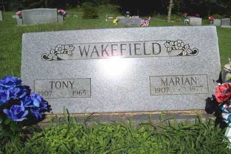 WAKEFIELD, TONY - Benton County, Arkansas | TONY WAKEFIELD - Arkansas Gravestone Photos