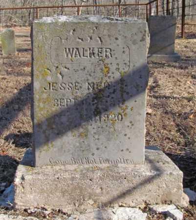 WALKER, JESSE NEWTON - Benton County, Arkansas | JESSE NEWTON WALKER - Arkansas Gravestone Photos