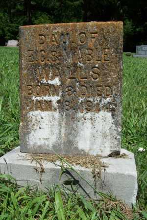 WALLS, DAUGHTER - Benton County, Arkansas | DAUGHTER WALLS - Arkansas Gravestone Photos