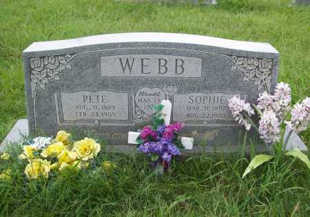 WEBB, PETE - Benton County, Arkansas | PETE WEBB - Arkansas Gravestone Photos