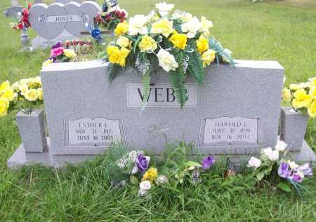 WEBB, ESTHER LEE - Benton County, Arkansas | ESTHER LEE WEBB - Arkansas Gravestone Photos