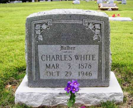 WHITE, CHARLES - Benton County, Arkansas | CHARLES WHITE - Arkansas Gravestone Photos