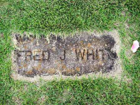 WHITE, FRED J. - Benton County, Arkansas | FRED J. WHITE - Arkansas Gravestone Photos