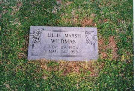 LOGHRY WILDMAN, LILLIE E (MARSH) - Benton County, Arkansas | LILLIE E (MARSH) LOGHRY WILDMAN - Arkansas Gravestone Photos