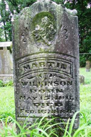 WILKINSON, MARTIN - Benton County, Arkansas | MARTIN WILKINSON - Arkansas Gravestone Photos