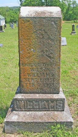 WILLIAMS, EMILY C - Benton County, Arkansas   EMILY C WILLIAMS - Arkansas Gravestone Photos