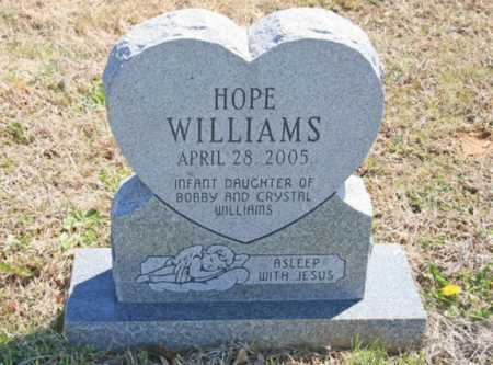 WILLIAMS, HOPE - Benton County, Arkansas | HOPE WILLIAMS - Arkansas Gravestone Photos
