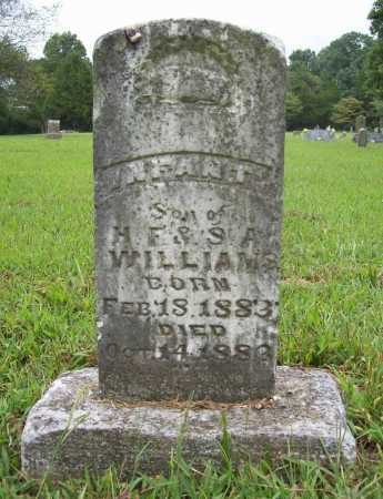 WILLIAMS, INFANT SON - Benton County, Arkansas | INFANT SON WILLIAMS - Arkansas Gravestone Photos