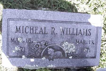 WILLIAMS, MICHAEL R. - Benton County, Arkansas | MICHAEL R. WILLIAMS - Arkansas Gravestone Photos
