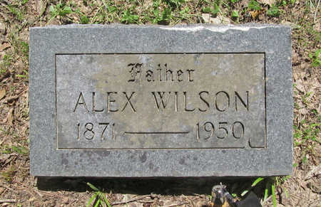 WILSON, ALEX - Benton County, Arkansas | ALEX WILSON - Arkansas Gravestone Photos
