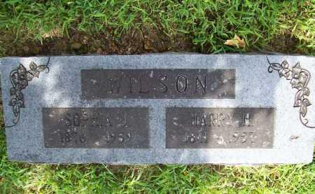 WILSON, HARRY H. - Benton County, Arkansas | HARRY H. WILSON - Arkansas Gravestone Photos