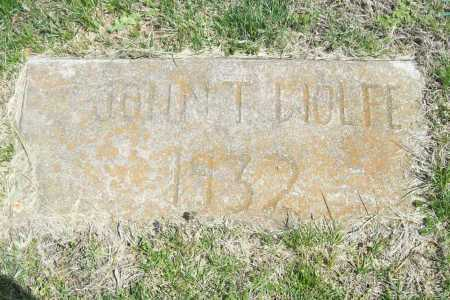 WOLFE, JOHN T. - Benton County, Arkansas | JOHN T. WOLFE - Arkansas Gravestone Photos