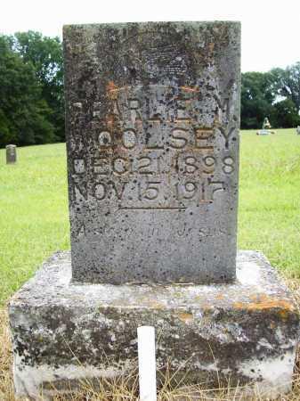 WOOLSEY, PEARLIE M. - Benton County, Arkansas | PEARLIE M. WOOLSEY - Arkansas Gravestone Photos