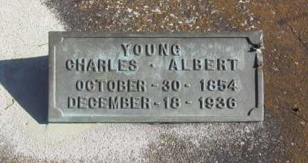YOUNG, CHARLES ALBERT - Benton County, Arkansas | CHARLES ALBERT YOUNG - Arkansas Gravestone Photos