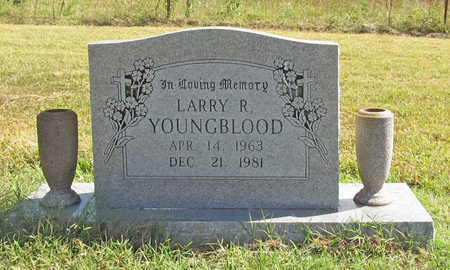 YOUNGBLOOD, LARRY R. - Benton County, Arkansas | LARRY R. YOUNGBLOOD - Arkansas Gravestone Photos