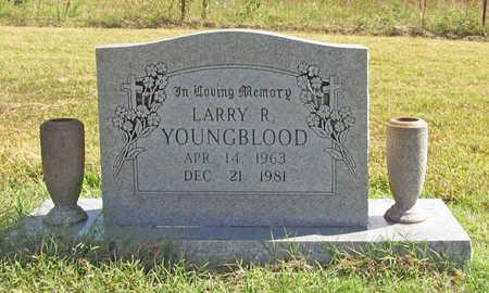 YOUNGBLOOD, LARRY R - Benton County, Arkansas | LARRY R YOUNGBLOOD - Arkansas Gravestone Photos