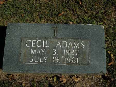 ADAMS, CECIL - Boone County, Arkansas | CECIL ADAMS - Arkansas Gravestone Photos