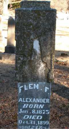 ALEXANDER, FLEM  F - Boone County, Arkansas | FLEM  F ALEXANDER - Arkansas Gravestone Photos