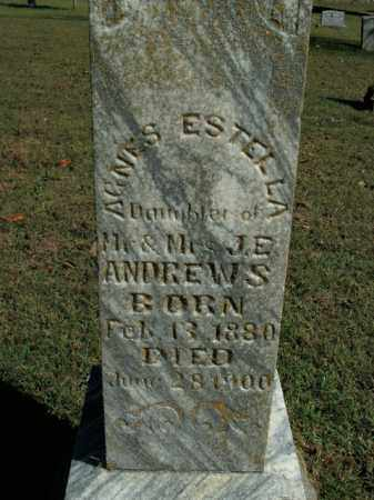 ANDREWS, AGNES ESTELLA - Boone County, Arkansas | AGNES ESTELLA ANDREWS - Arkansas Gravestone Photos