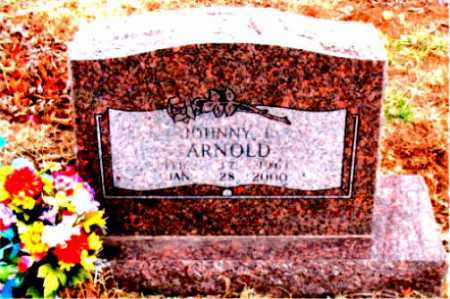 ARNOLD, JOHNNY L. - Boone County, Arkansas | JOHNNY L. ARNOLD - Arkansas Gravestone Photos