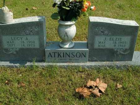 ATKINSON, LUCY A. - Boone County, Arkansas | LUCY A. ATKINSON - Arkansas Gravestone Photos
