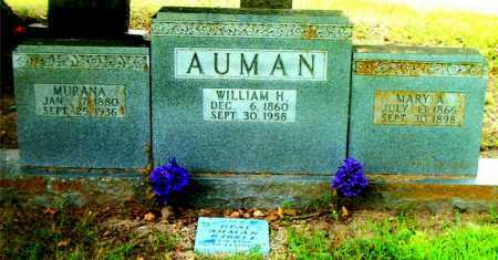 AUMAN, MURANA - Boone County, Arkansas | MURANA AUMAN - Arkansas Gravestone Photos