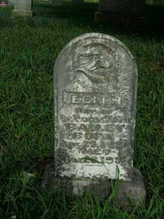 BAILEY, EDITH - Boone County, Arkansas | EDITH BAILEY - Arkansas Gravestone Photos