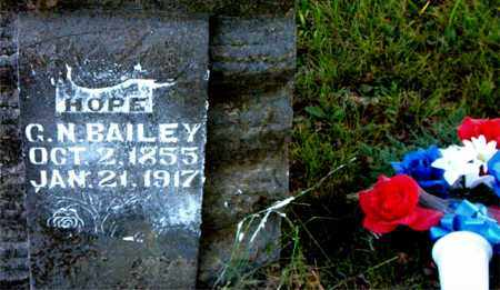 BAILEY, G.  N. - Boone County, Arkansas | G.  N. BAILEY - Arkansas Gravestone Photos