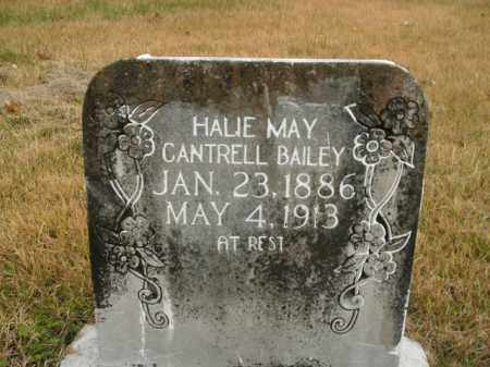 CANTRELL BAILEY, HALIE MAY - Boone County, Arkansas | HALIE MAY CANTRELL BAILEY - Arkansas Gravestone Photos
