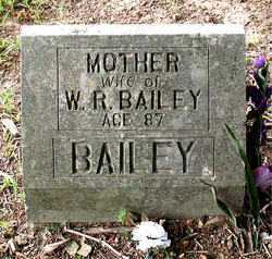 MC GEHEE BAILEY, LOUESA - Boone County, Arkansas | LOUESA MC GEHEE BAILEY - Arkansas Gravestone Photos