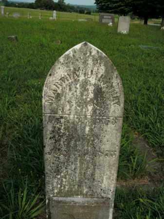 BAILEY, MARTHA J. - Boone County, Arkansas | MARTHA J. BAILEY - Arkansas Gravestone Photos