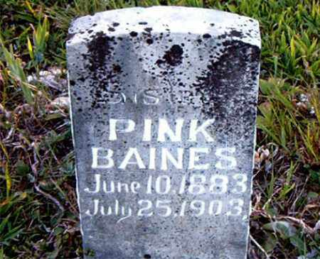 BAINES, PINK - Boone County, Arkansas | PINK BAINES - Arkansas Gravestone Photos