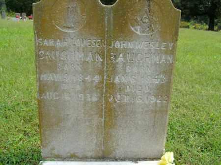BAUGHMAN, JOHN WESLEY - Boone County, Arkansas | JOHN WESLEY BAUGHMAN - Arkansas Gravestone Photos