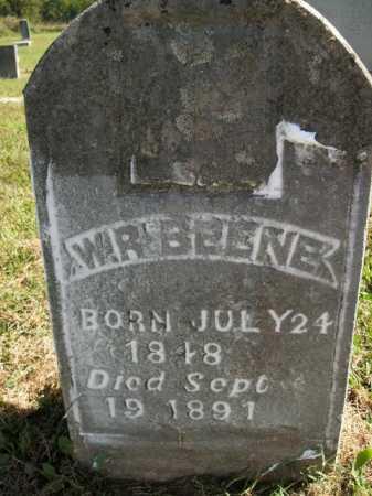 BEENE, W.R. - Boone County, Arkansas | W.R. BEENE - Arkansas Gravestone Photos