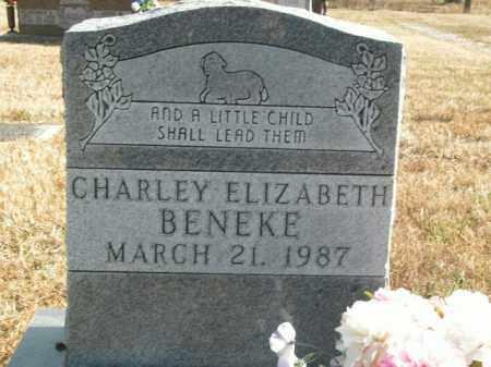 BENEKE, CHARLEY ELIZABETH - Boone County, Arkansas | CHARLEY ELIZABETH BENEKE - Arkansas Gravestone Photos